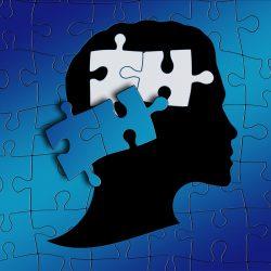 Munger's Psychology of Human Misjudgement